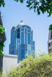Стеклянная башня офиса через деревья Стоковые Изображения RF