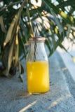 Стеклянная бутылка при свеже отжатая тропическая солома фруктового сока стоя на камне Зеленые листья пальмы в предпосылке золотис Стоковое Изображение RF