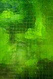 стеклянная зеленая стена Стоковое Изображение RF
