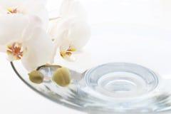 стеклянная орхидея сверх Стоковое фото RF
