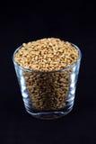 стеклянная пшеница зерен Стоковая Фотография RF