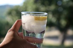 стеклянная сверкная вода Стоковое Фото
