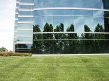 стеклянная трава n Стоковая Фотография
