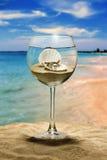 стеклянное вино seashell перлы Стоковые Изображения