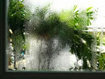 Стеклянное окно вполне падений воды, на утре после проливного дождя стоковая фотография rf