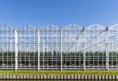 Стеклянные дома в Голландии в Westland стоковое фото rf