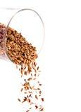стеклянные семена Стоковое фото RF