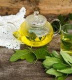 Стеклянные чайник и чашка с травяным чаем Стоковые Изображения RF