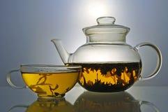 Стеклянные чайник и чашка чая стоковое изображение rf