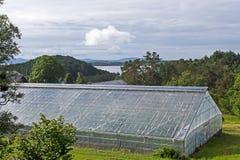 Стеклянный парник для продукции томатов в Норвегии Стоковое Изображение RF