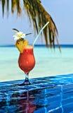 стеклянный papaw Стоковое Изображение