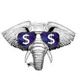 Стекла африканского или индийского слона нося с иллюстрацией знака доллара с диким животным для футболки, эскиза татуировки Стоковые Фотографии RF