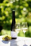2 стекла белого вина Стоковое Изображение
