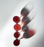 4 стекла вина Стоковые Изображения RF