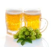 2 стекла завода пива и хмеля Стоковые Изображения