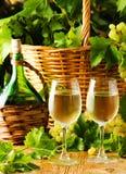 2 стекла и бутылки виноградин basketof белого вина Стоковое Изображение