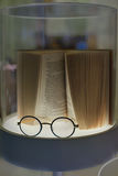 Стекла и и книга Стоковое Фото