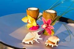 2 стекла кокоса с орхидеями и 2 seashells Стоковые Фотографии RF