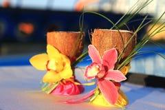 2 стекла кокосов Стоковые Изображения