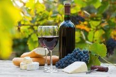 2 стекла красного вина и бутылки Стоковое фото RF