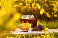2 стекла красного вина и бутылки Стоковая Фотография RF