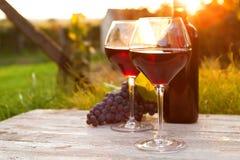 2 стекла красного вина Стоковая Фотография