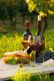 2 стекла красного и белого вина Стоковая Фотография