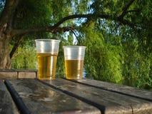 Стекла пива на деревянном столе под деревом вербы Стоковые Фото