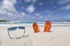 Стекла Солнця и темповые сальто сальто Стоковая Фотография RF