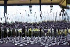 стекла спиртных пить установили Стоковые Изображения RF
