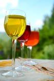 Стекла с красочным вином Стоковая Фотография