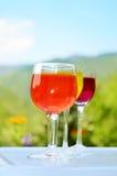 Стекла с красочным вином Стоковое фото RF