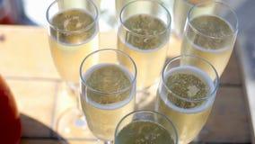Стекла шампанского с пузырями видеоматериал