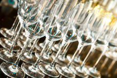 Стекла шампанского Стоковые Фото
