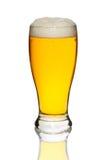 Стекло вкусного и свежего изолированного пива Стоковое фото RF
