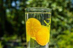 Стекло воды из крана в сокровище горячего лета реальном стоковое изображение rf