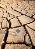 Стекло воды на иссушанной почве VI стоковое фото rf