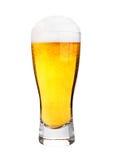 Стекло изолированного пива с заморозком Стоковое Фото