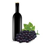 Стекло изолированных вина и виноградины Иллюстрация штока