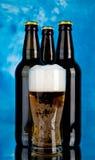 Стекло и бутылки с пивом Стоковое Изображение RF