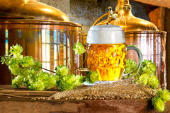 Стекло и сырье пива для продукции пива Стоковое Изображение RF