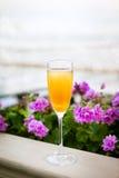 Стекло коктеиля алкоголички Bellini итальянки Стоковое Фото