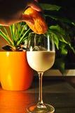 Стекло молока на таблице в свете вечера Стоковые Фото