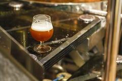 Стекло пива на винзаводе Стоковое Изображение