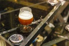 Стекло пива на винзаводе Стоковая Фотография RF