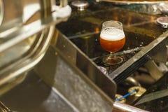 Стекло пива на винзаводе Стоковые Изображения