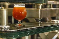 Стекло пива на винзаводе Стоковые Фото
