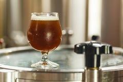 Стекло пива на винзаводе Стоковые Изображения RF
