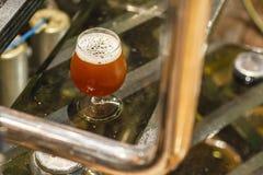 Стекло пива на винзаводе Стоковая Фотография