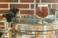 Стекло пива на винзаводе Стоковые Фотографии RF
